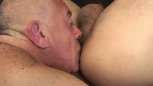 old man bear sex older4me3
